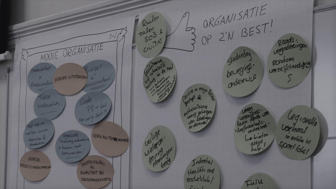 organisatiestructuur en besturing